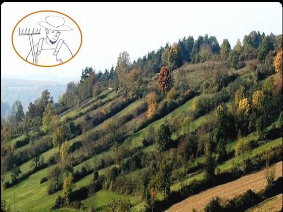 Flora-Fauna-Archehof WILDE SAATEN