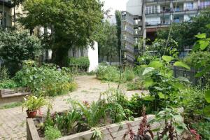 Nachhaltiges Mehrweggeschirr für unsere Umweltworkshops und Gartenfeste