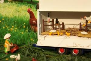 Mobiler Hühnerstall – artgerecht, umweltbewusst, nachhaltig