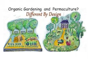 Permakultur Design Kurs