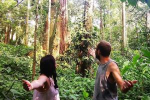Regenwaldschutz mit nachhaltigen Ökotourismus in Costa Rica