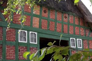 Offenes Seehausen – Kultur, Kunst, Musik, Insekten, Blumen, Energie auftanken