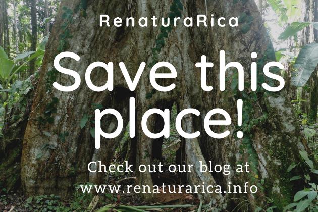 renaturaRica - Saving a natural paradise from destruction