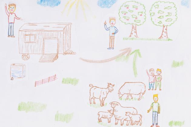 Weideausrüstung für Schafe und Ziegen im Streuobstgebiet