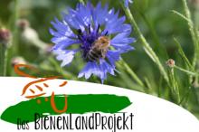 Das BienenLandProjekt