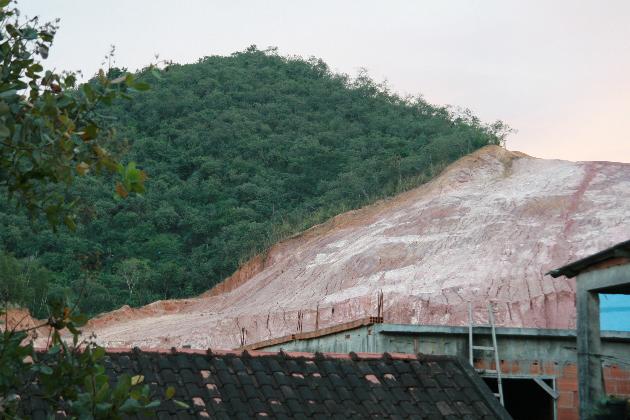Unterstützung des Vereins Ecopaper: weniger Papier – mehr Wald