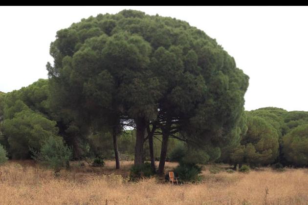 Ökologisch-sozial nachhaltiges Tourismusprojekt in Andalusien
