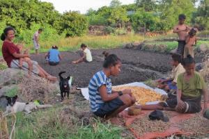 effishent – Aquaponics-Farming für die ländlichen Bergregionen Indonesiens