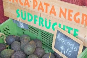 Solidarische Landwirtschaft in Andalusien für Ernteteiler in Deutschland